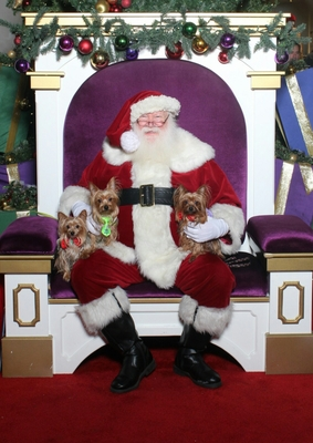 the-littles-and-santa