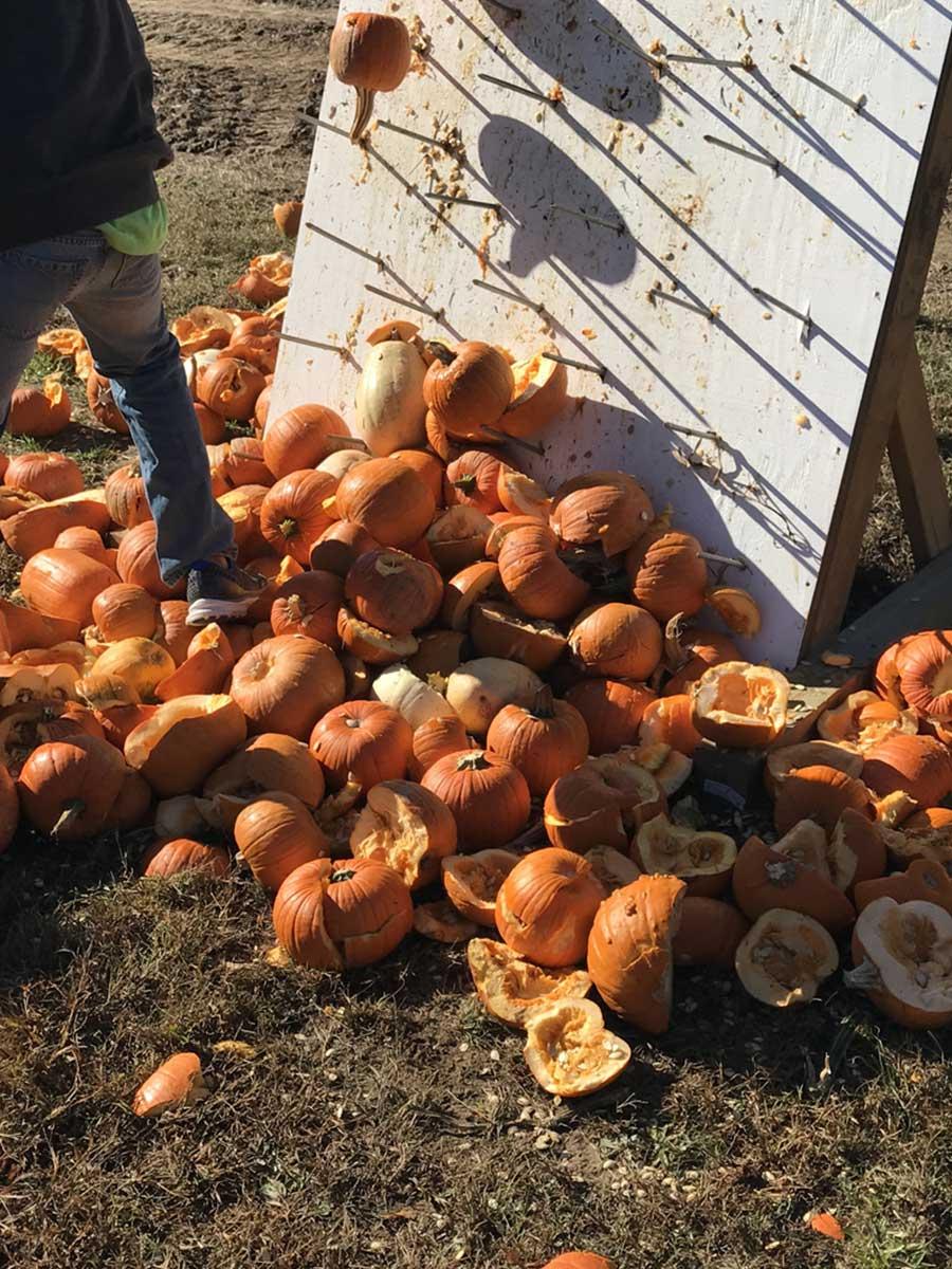 PumpkinSmash1