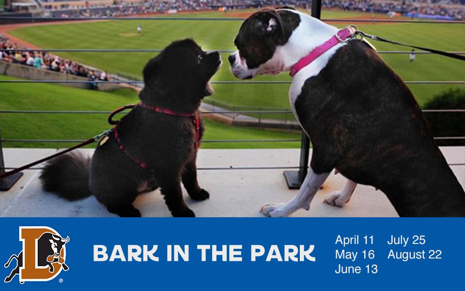 Bark in the Park at Durham Bulls